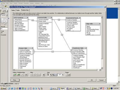 FileMakerRelationship.JPG
